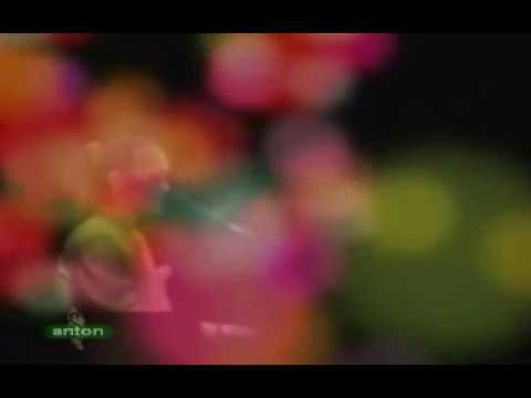 Japan Song -  Shiosai - Mayumi Itsuwa