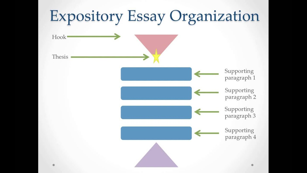 different types of essay organization The organization of an essay the following explains the traditional way to organize an expository essay that is trying to make a point about some topic and to provide supporting material for that point.