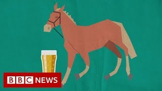 How horse manure can be turned into beer - BBC News