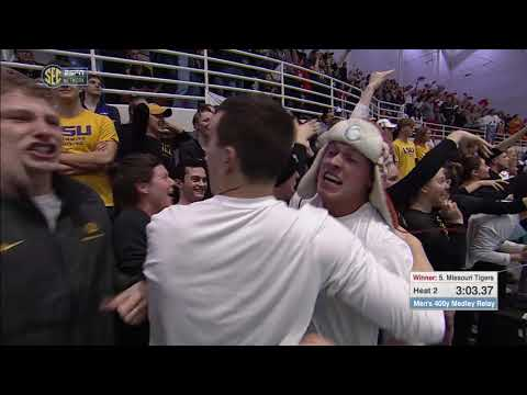 HIGHLIGHTS: Mizzou Men's 400 Medley Relay Wins SEC Championship