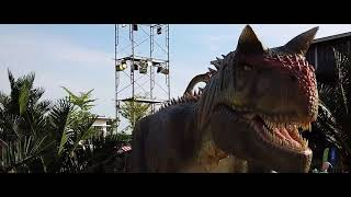 Dinosaur Kingdom Themepaktu | Cinema Version