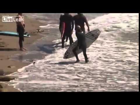 SURF RAGE in MALiBU