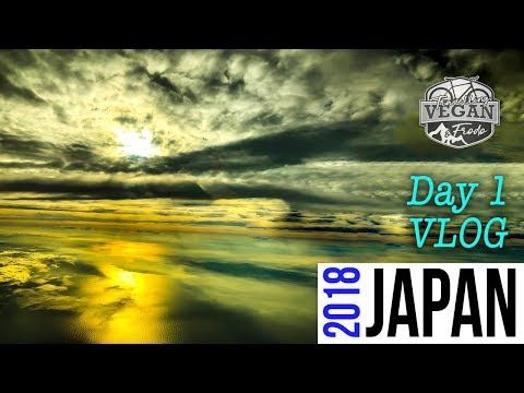 JAPAN VLOG DAY 1 - sleeping in the airport, Security checks, building a bike at Matsuyama, Drone foo