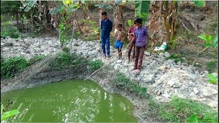 Best Fish Hunting | Live Fish Hunting In the village | Traditional Fishing