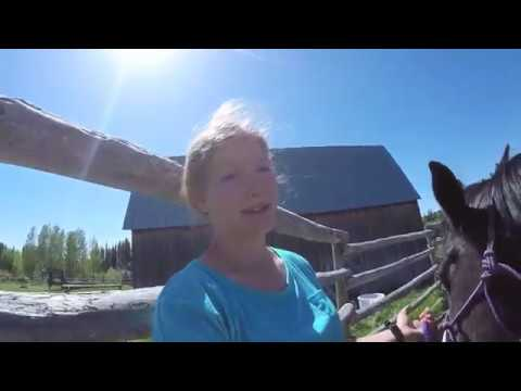 WWOOF Vlog A Day Working At The Colour V Ranch, BC Canada