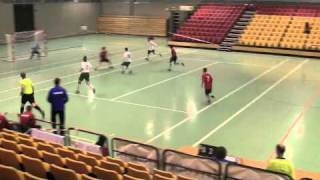 Dag 8 Norge-Slovenia 3-7 (menn)