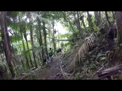 Monte Guilarte Adjuntas Puerto Rico 2015