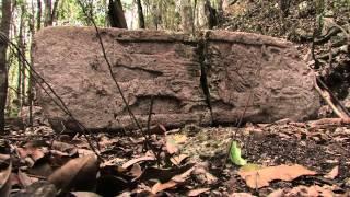 видео Древний город майя