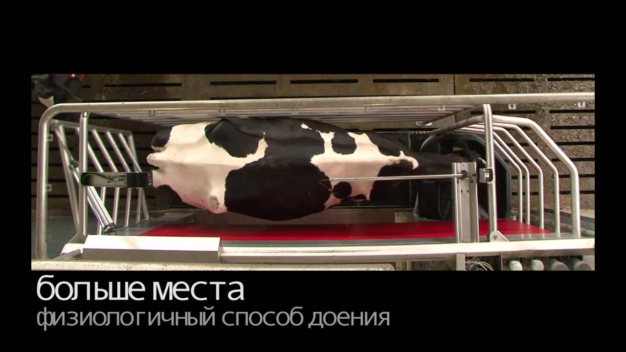 Lely Astronaut A4 - Product video (Russian)