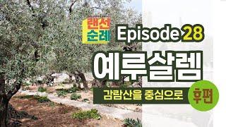 Episode 28 랜선순례 - 예루살렘: 감람산을 중…