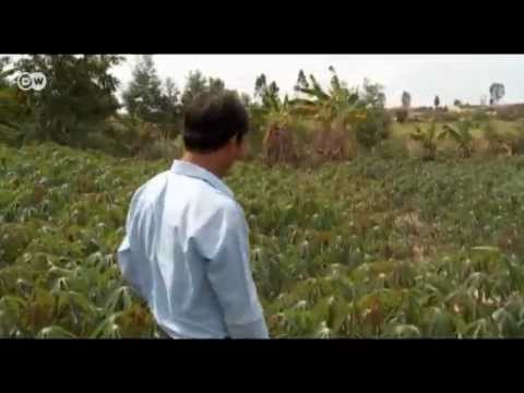 Cleaner Vietnam - Biogas from Cassava | Global 3000