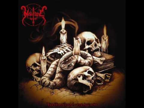 Nekrape - Swarm of Soulless Maggots