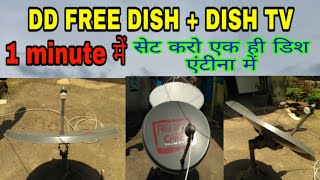 How to set DD free Dish and Dish TV in one dish antenna || Free dish Care