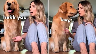 I Tried to Prank My Dog!