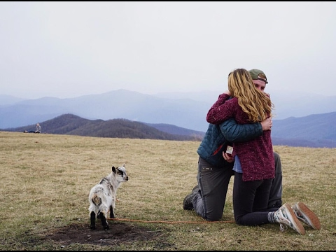 Proposing To My Girlfriend With A Baby Goat Youtube