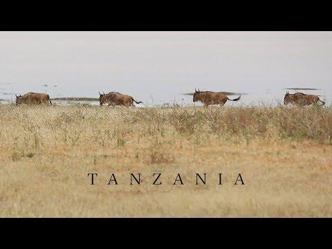 Video Journal #1: Tanzania | Travel Film