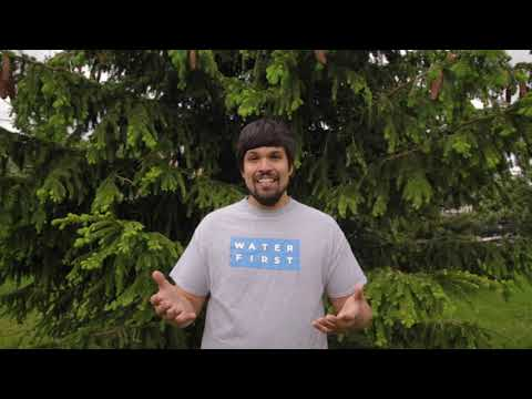 First Nations Advisory Council (FNAC) Part 4: Dillon & Youth Education