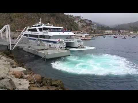 Catalina  Express Docking in Avalon