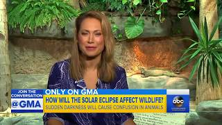 How animals may react to total solar eclipse