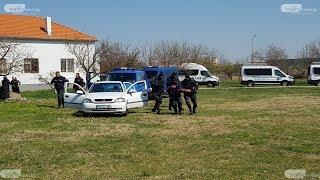 Четириногите служители на полицията влязоха в зрелищна схватка