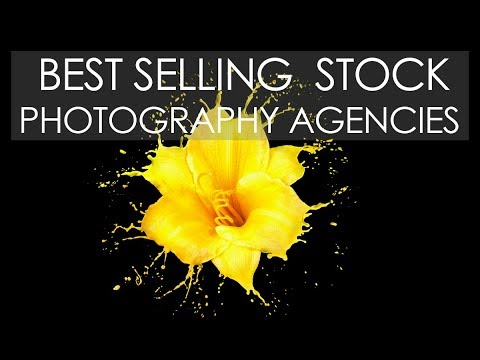 Best SELLING Stock PHOTOGRAPHY Agencies in the last 12 months