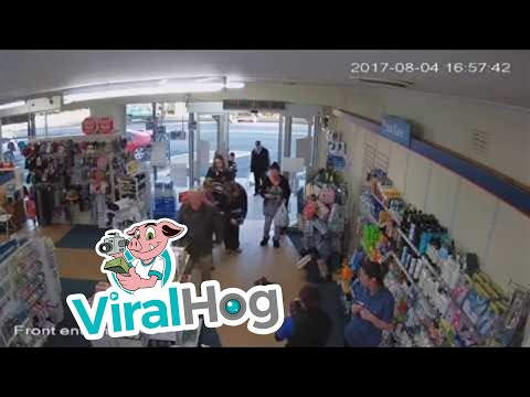 Koala Visits Pharmacy