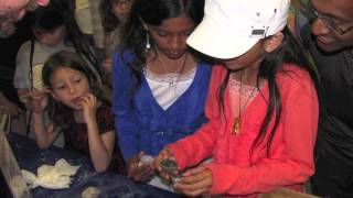 Santa Clara Valley Gem and Mineral Show Preview 2014