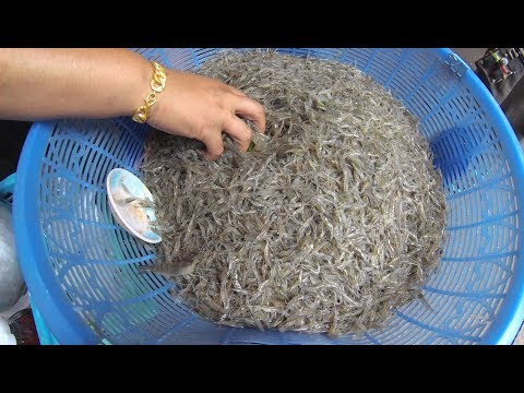 Thailand Bangkok Street Food Dancing Shrimp Gong Ten YDXJ0793