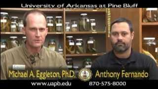 UAPB Masters of Science Aquaculture Fisheries