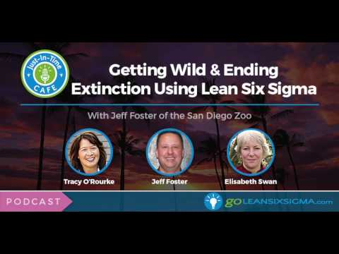 PODCAST: Just-In-Time Cafe, Episode 14: Getting Wild & Ending Extinction Using Lean Six Sigma