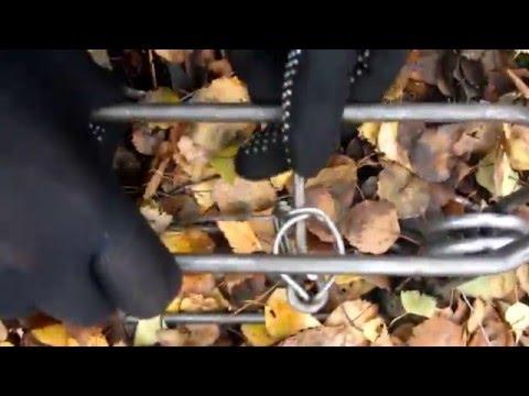 Как ставить проходной капкан на бобра