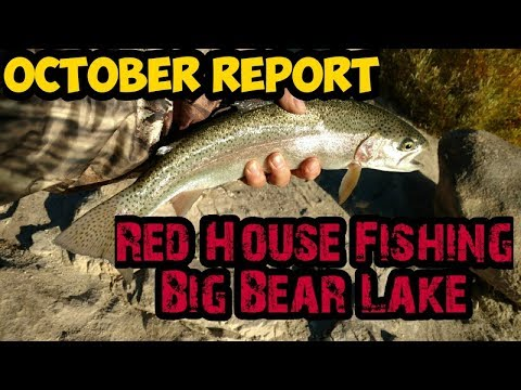 2 Day Big Bear Lake Fishing Report | Red House | 2019