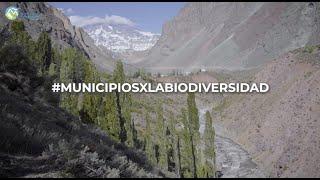 #MunicipiosXLaBiodiversidad San José de Maipo