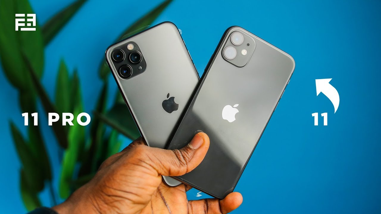 Why the iPhone 11 is the BETTER choice: A Review!