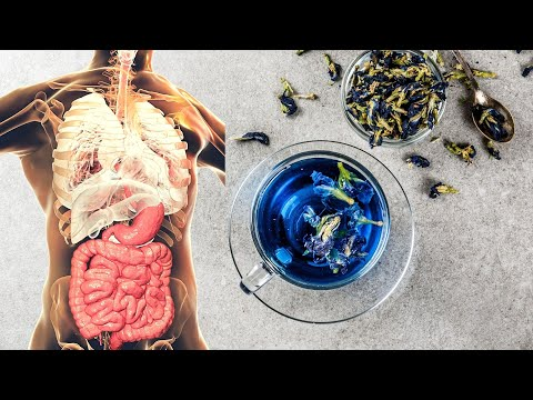 Blue Tea: Why You Should Drink This Tea? | Healthy Living Tips