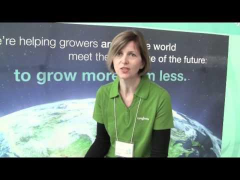 Sustainability - Social, Environmental and Economic