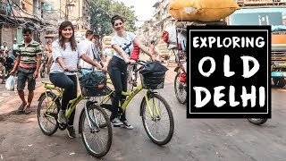 OLD DELHI VLOG | Exploring Old Delhi on a Cycle with Travel Vlog IV | Chandni Chowk and More!
