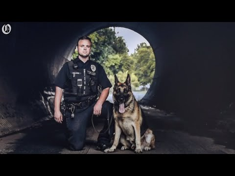 Charlotte nc police officer jobs