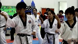 Taekwondo Chung Do Kwan Practitioner