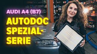 Montage AUDI A4 (8EC, B7) Bremsklötze: kostenloses Video