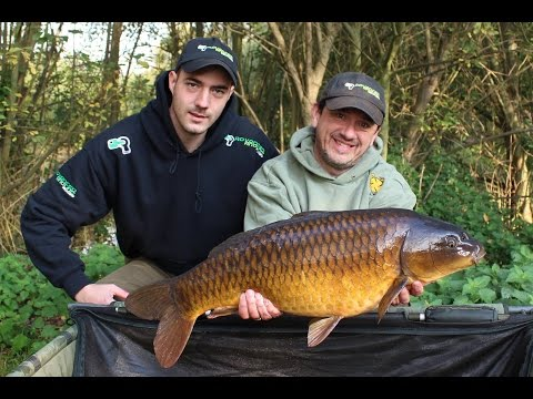 Star-Flite Stainless Social At Sapphire Lakes Newark - Reality Carp Fishing
