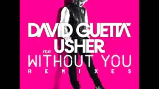 David guetta - Without You ft. Usher (AUDIO)