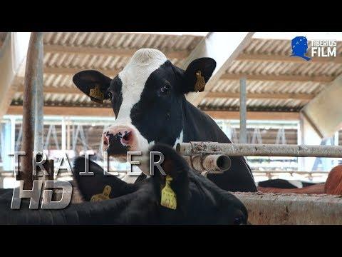 Das System Milch (HD Trailer Deutsch)