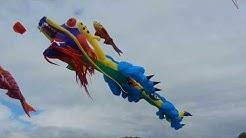 Chinesischer Drachen 15m Windspiel