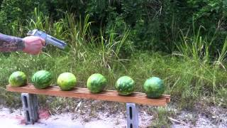 Smith And Wesson 500 Watermelon