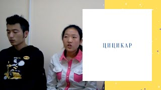 Цицикар. Видео студентов