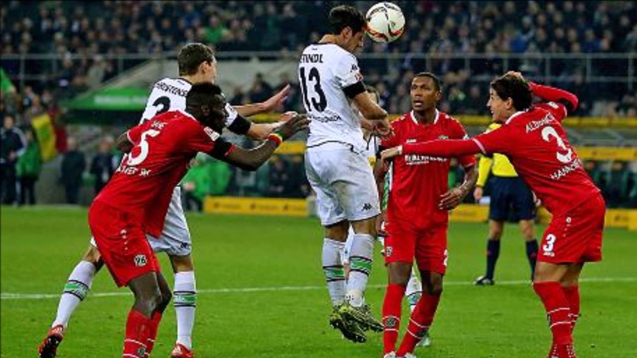 Hannover 96 Fan