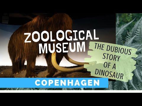 Zoologisches Museum Kopenhagen