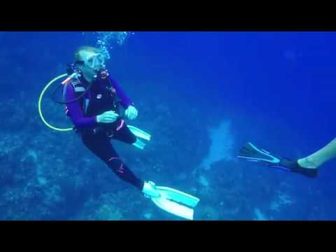 Diving Georgetown Grand Cayman Islands with Divers Down November 2017