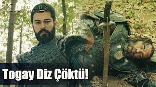 Osman Bey, Togay'a böyle diz çöktürdü! - Kuruluş Osman 61. Bölüm
